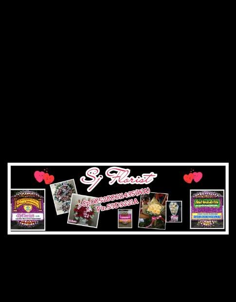Popo Shop Online