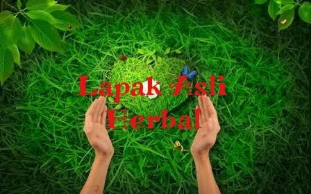 Lapak Asli Herbal