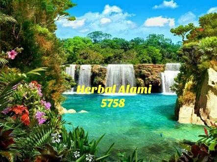Herbal alami 5758