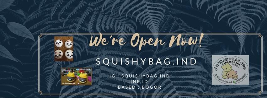 SQUISHYBAG.IND