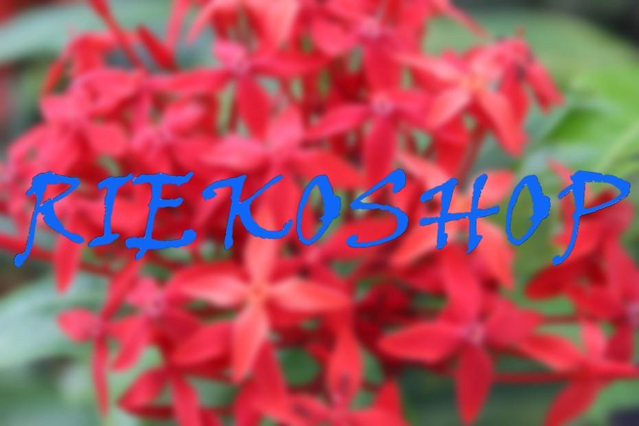 RiEkoShop2