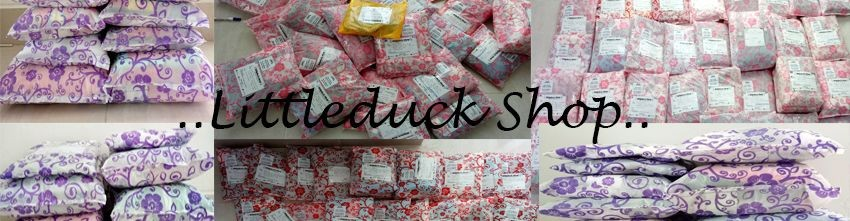 Littleduckshop