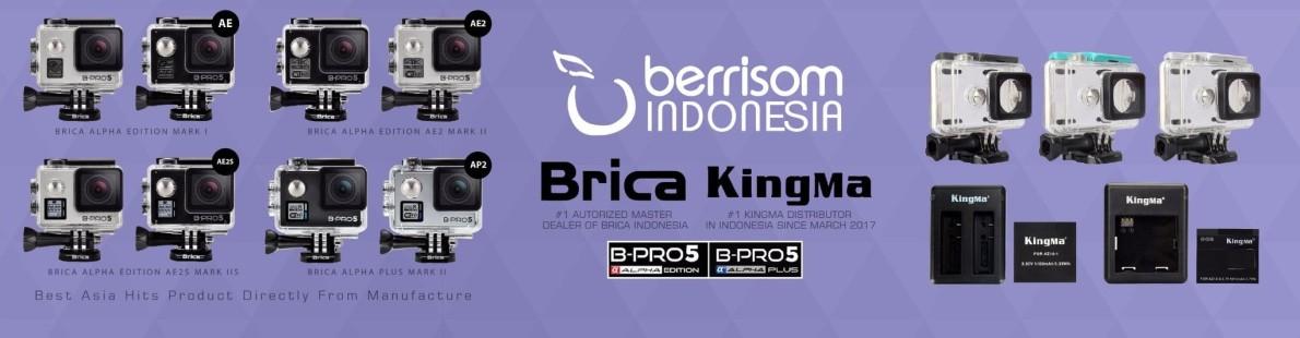 Berrisom Indonesia
