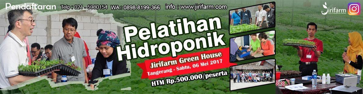 JIRIFarm Hidroponik