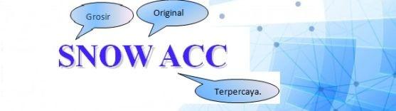 SnowAcc