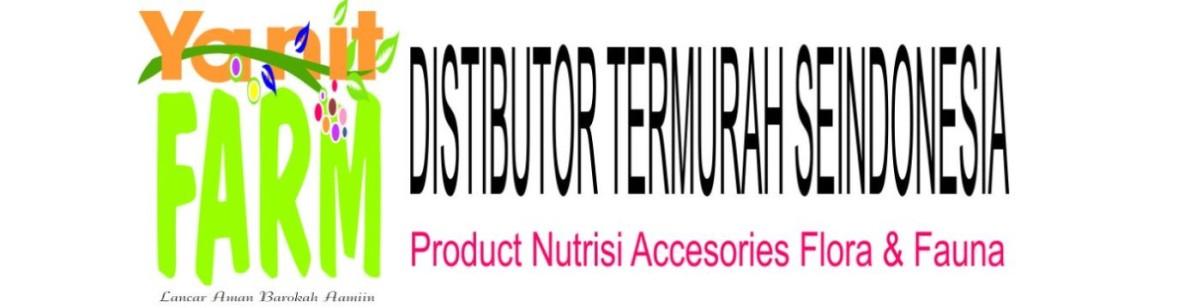 Herbal Terapi Patria