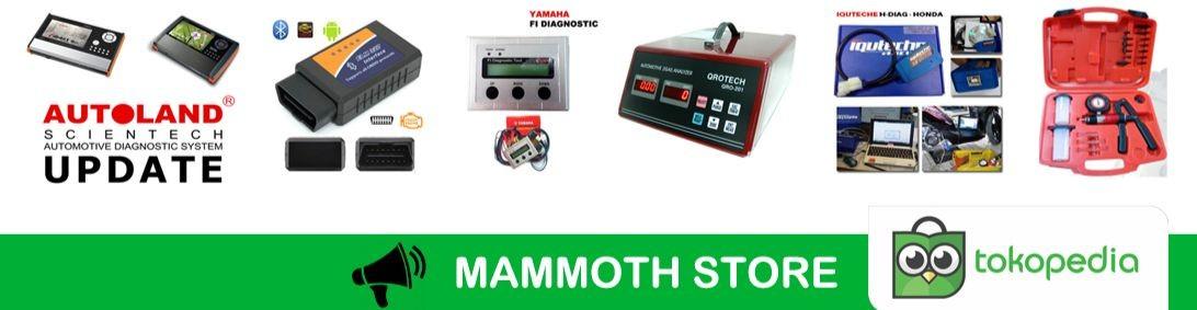 Mammoth Store
