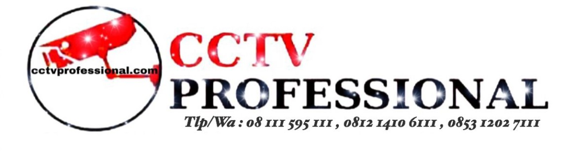 cctv professional