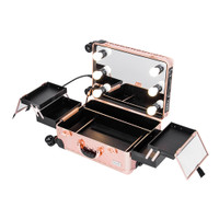 Sonia Miller Cabin Size Beauty Makeup Case Rose Gold With 6 Tri-Color thumbnail