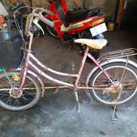 Jual Sepeda Minion Ukuran 20 Komplit Kab Gunungkidul Nofe Tokopedia