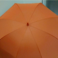 Payung Golf Orange Gg Pedal dalem Silver + Sarung