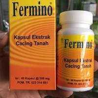 Fermino kapsul ekstrak cacing tanah 40 kapsul obat tifus