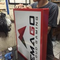 Neon box 30 X 60 cm