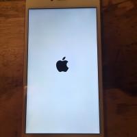 iPhone 6 Plus Gold 16Gb Minus Icloud / Terkunci Aktivasi