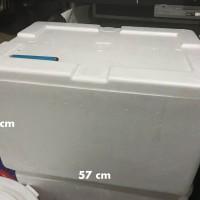Steroform Box besar muat 20kg