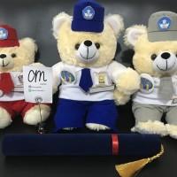 Boneka Wisuda / Kelulusan Seragam SD, SMP, SMA +-40cm (harga satuan)
