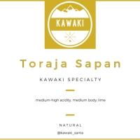 Biji Kopi Specialty Arabica Toraja Sapan 100 gram