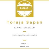 Biji Kopi Specialty Arabica Toraja Sapan 200 gram