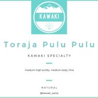 Biji Kopi Specialty Arabica Toraja Pulu Pulu 100 gram