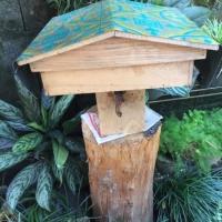 Jual bibit T ITAMA / kelulut / lebah tanpa sengat penghasil madu