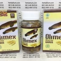 OLIMEX Kapsul Ekstrak Ikan Gabus/Kutuk -Herbal Luka setelah Operasi-
