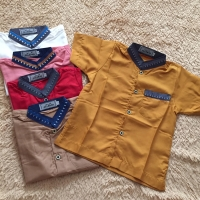 Baju Koko Anak Allebas Size 0 - 5 Murah