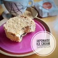Japonaise Ice Cream Sandwich box isi 10 pcs. es krim sandwich