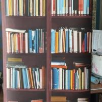 Wallpaper Dinding motif Rak Buku Moderen