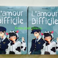 Novel L'Amore Difficile - Ainindah