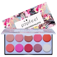 POPFEEL BLUSH 10 COLOR WANTED CHEECK PALETTE