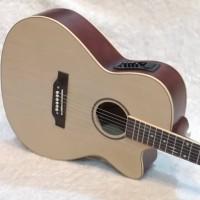 Katalog Lakewood Guitar Katalog.or.id