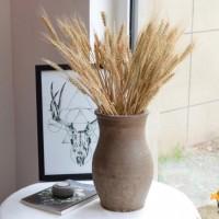 Dried Weath - Gandum Kering - Bunga Kering