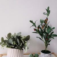 Daun Plastik Eucalyptus - Spray