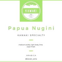 Biji Kopi Specialty Arabica Papua Nugini 100 gram