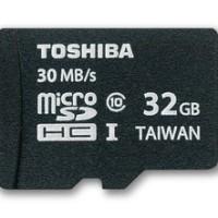 Toshiba microSDHC 32 GB Professional