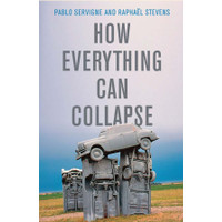 How Everything Can Collapse A Manual for our Times