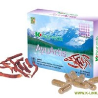 K-Ayuverda AyuArtis (60 capsules)