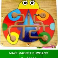 Maze Magnet Kumbang
