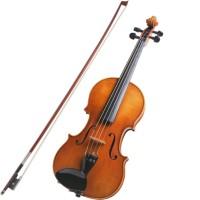 Custom Violin/ Biola Custom