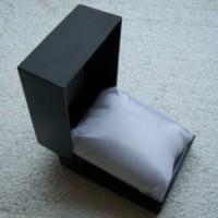 Plastic Watch Box With Pillow (Kotak Jam Tangan Plastik Dengan Bantal)