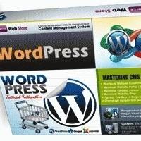 Belajar Cepat Pembuatan Website Dengan Wordpress - Langsung Praktek
