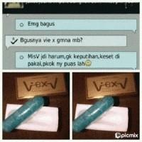 VIE X V