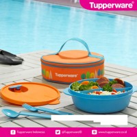 Jual Tupperware Fancy Crystalwave Lunch Set Tempat Makan Murah