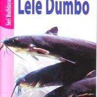 Budi Daya Beternak Ikan Lele Dumbo