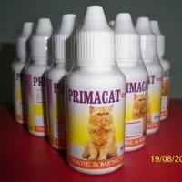 Obat Diare Dan Mencret Kucing