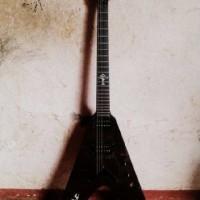 Harga gitar flying | antitipu.com