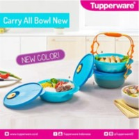 Tupperware Carry all Bowl Rantang Tempat Makan