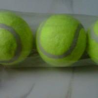 Bola Tenis/Baseball/Kasti