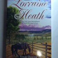 Novel dastan Texas Destiny Cinta Tak Bersyarat Oleh Lorraine Heath