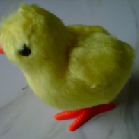 Mainan Anak Ayam Patok-patok